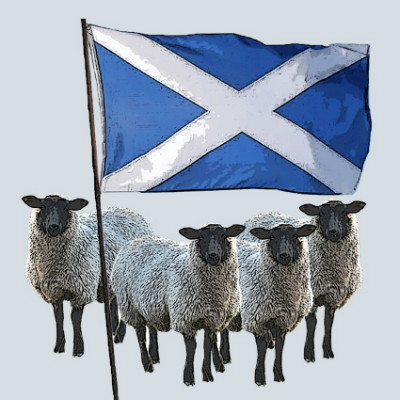 Scottish Flag and Sheep Greeting Card